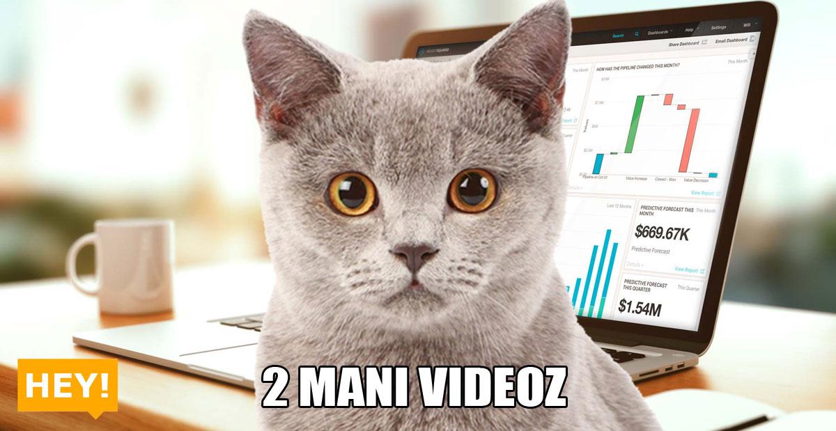 hey-2-mani-videoz-02