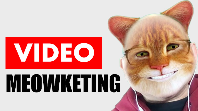 video meowketing